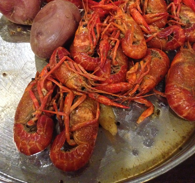 crayfish crawfish crawdads